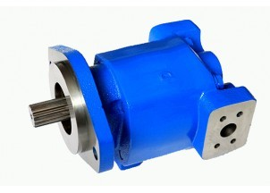 mlr 50~500 High Pressure Hydraulic Gear Pump And Motor