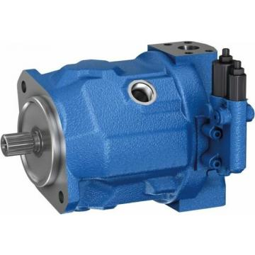 Application to Rexroth A10V (S) 016/18//28/45/71/100/140 Hydraulic Pump Spare Parts