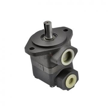 V10 Series Hydraulic Vane Pump