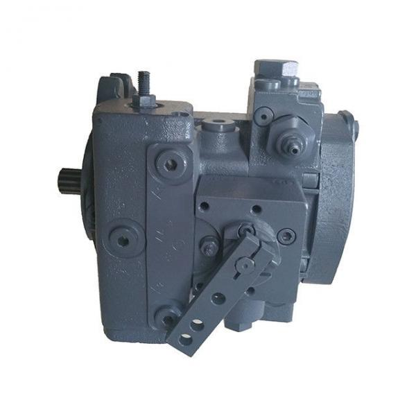 A8vo107 Rexroth Hydraulic Pump for Machinery #1 image