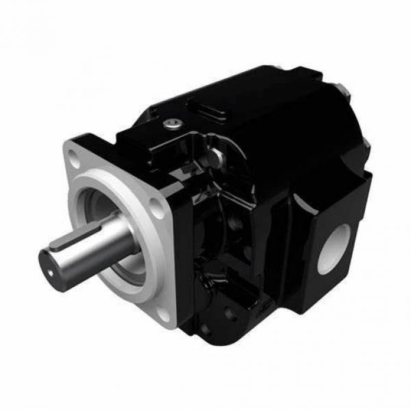 Aluminum Gear Motors Honor 2GG Commercial New Aftermarket Replacement Hydraulic #1 image