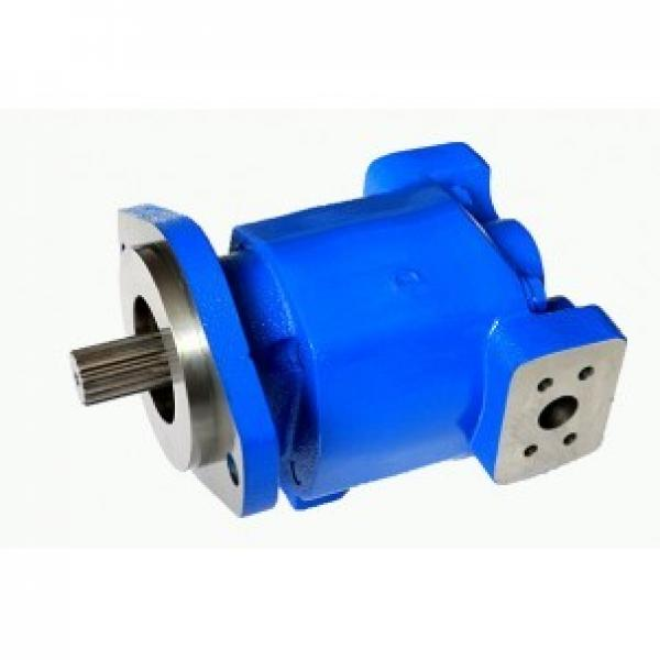 China made Parker Commercial P30 P31 P50 P51 Gear Pump with low price #1 image